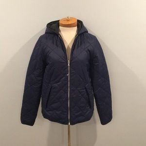 Express Quilted Puffer Jacket (Blue)